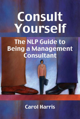 Picture of Consult Yourself - Paperback Edition