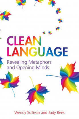Picture of Clean Language